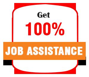 100% job
